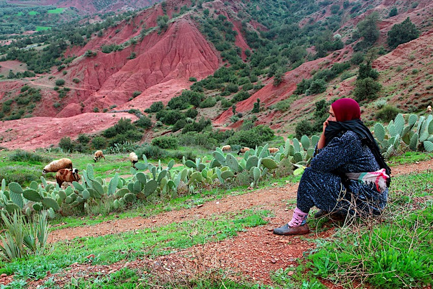 terre-amanar-oued