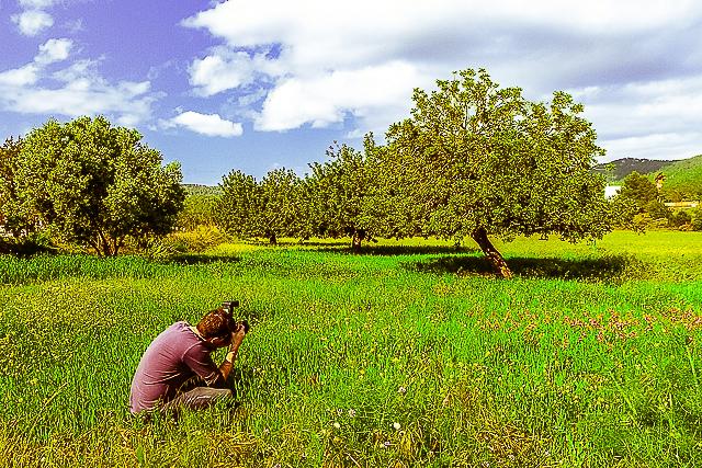 Photographe dans le champ