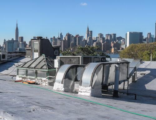 La ferme est sur le toit de Brooklyn