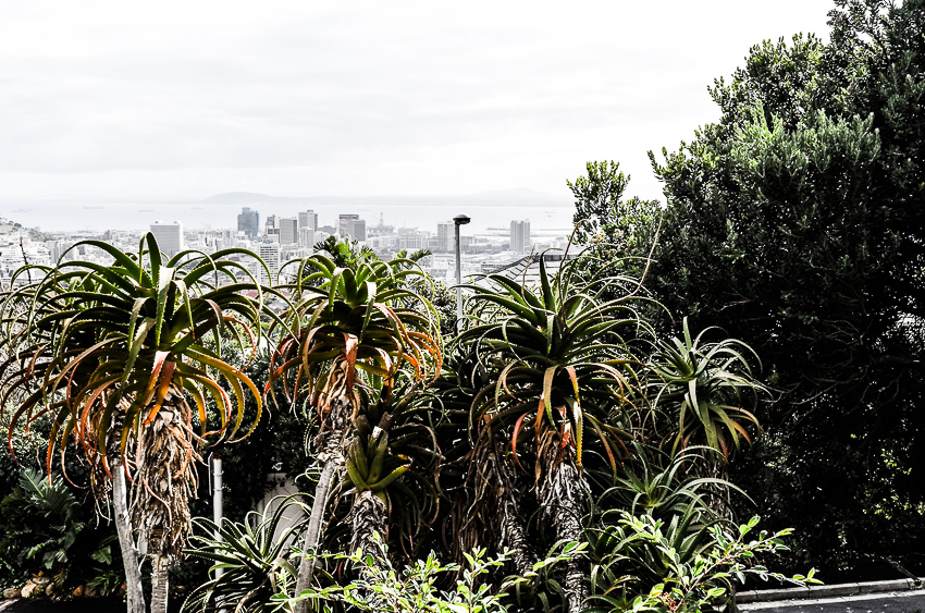Vue panoramique de la ville  , Le Cap